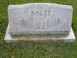 Albert Kaupp