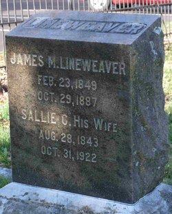 James Madison Lineweaver
