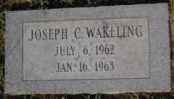 Joseph C Wakeling