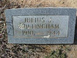 Julius J Willingham