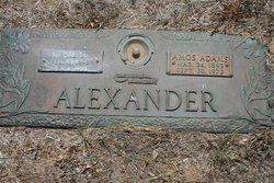 Rose Drucilla <I>Sullivan</I> Alexander