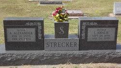 "Ida Amalie ""Mollie"" <I>Michaelis</I> Strecker"