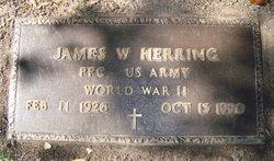 James W Herring