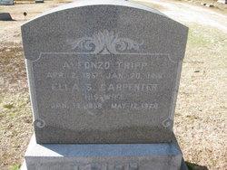 Ella Sarah <I>Carpenter</I> Tripp