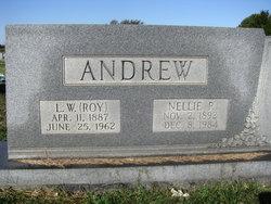 Nellie P Andrew
