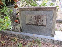Joel Lee Hodges