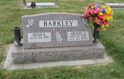 Arlisse Jane <I>Timm</I> Barkley
