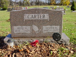 Lester D Carter