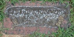 George W Hammons
