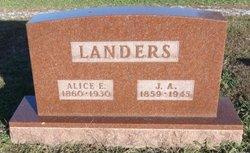 Alice E Landers