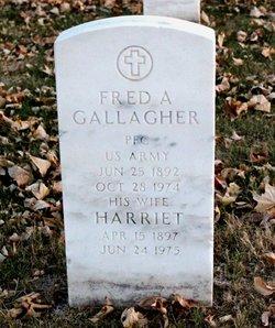 Harriet Gallagher