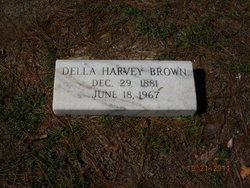 Della <I>Harvey</I> Brown