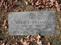 David L Williams