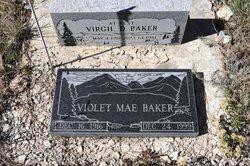 Virgil D. Baker