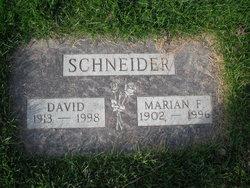 David S Schneider