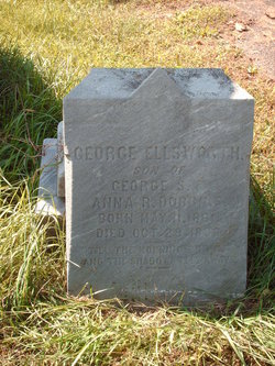 George Ellsworth Dobbins