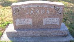 Albert A Janda