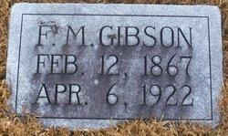 Flavius Marion Gibson, Sr