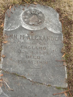 Ann M Alexander