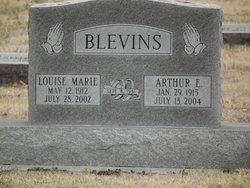 Louise M. <I>Anderson</I> Blevins