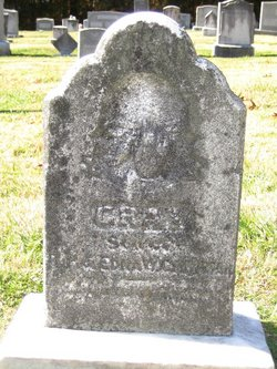 Gray Clingman