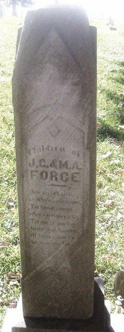 Amanda Force
