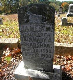 James M Bradshaw