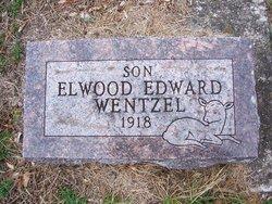 Elwood Edward Wentzel