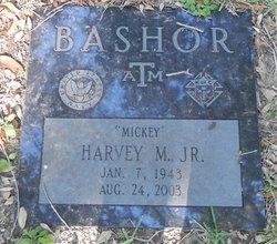 Harvey Michael Bashor, Jr