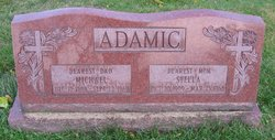 Michael N Adamic