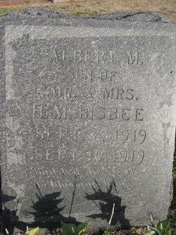 Albert M. Bisbee