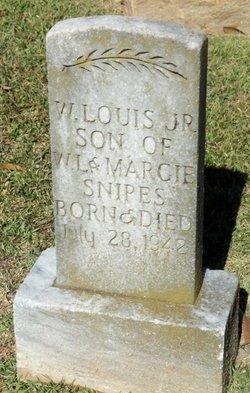 W Louis Snipes, Jr