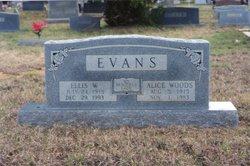 Ellis Wendell Evans