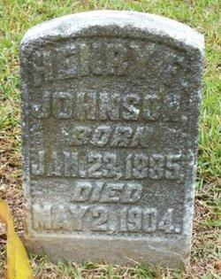 Henry F Johnson