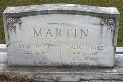 Jacob Harold Martin