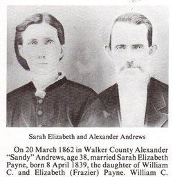 Sarah Elizabeth <I>Payne</I> Andrews