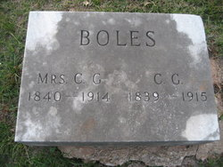 Elizabeth Francis <I>Andrews</I> Boles