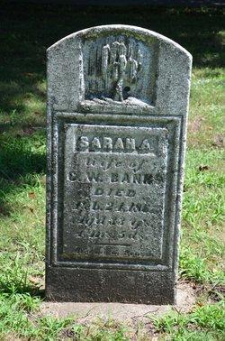 Sarah <I>Huckins</I> Banks