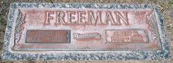 Albert M. Freeman