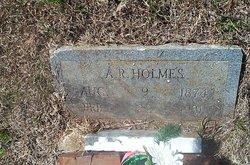Artemus Riley Holmes