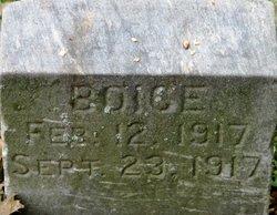 Mary Ethel Boice