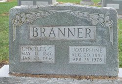 Anna Josephine <I>Brunk</I> Branner