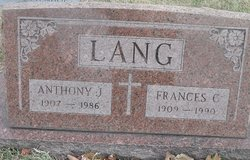 Anthony J Lang