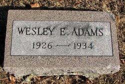 Wesley E Adams