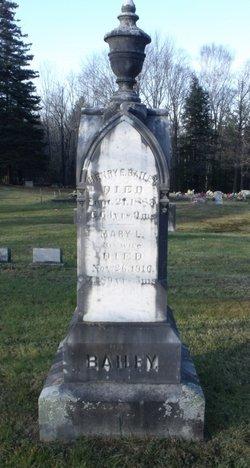 Henry E. Bailey