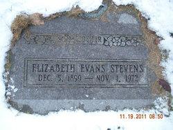 """Elizabeth """"Beth"""" <I>Evans</I> Stevens"""