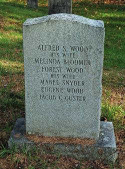Jacob C. Custer