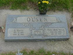 Ole Vaughn Olsen