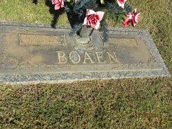 Weta <I>lowe</I> Boaen