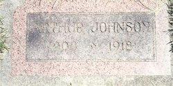 Arthur Edward Johnson